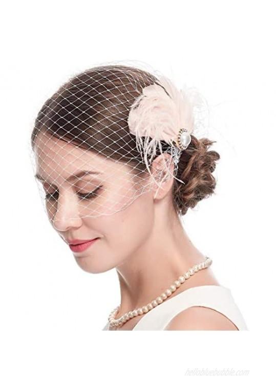 Women's 20s Fascinator Mesh Veil Hair Clips Bridal Wedding Tea Party Fascinator Veil for Women